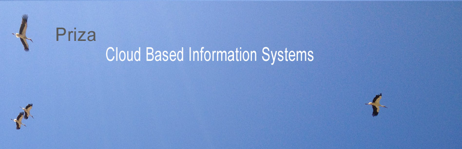 Cloud Based Information Systems