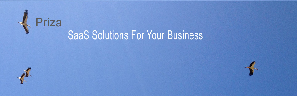 SaaS Solutions For Your Business